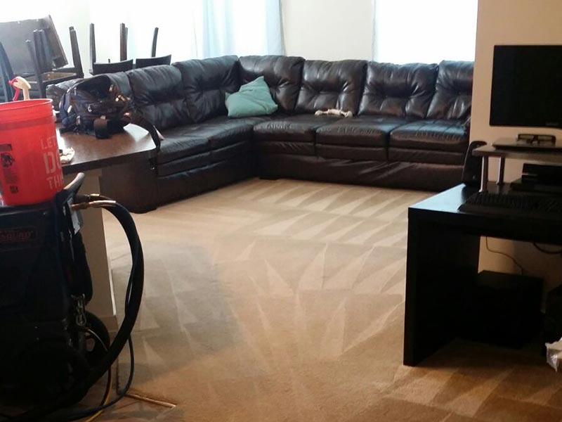 2007-2019 | All Rights Reserved | Carpet-Cleaners-Houston-TX.Com.